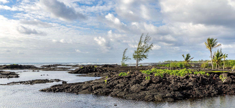 Puna Big Island