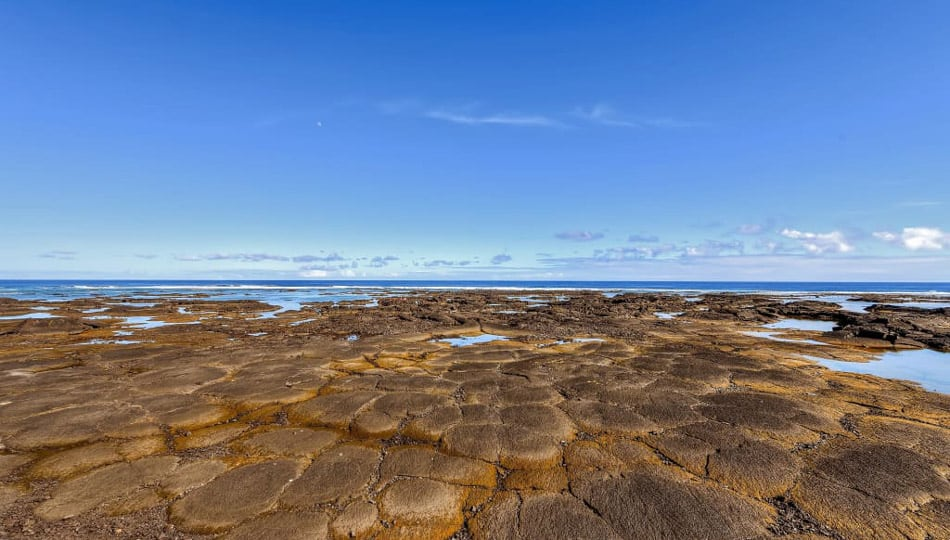 The Kapoho Tide pools offers some of the best snorkeling on the Big Island