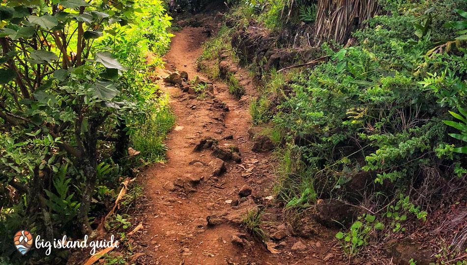 Pololu Valley Hiking Trail