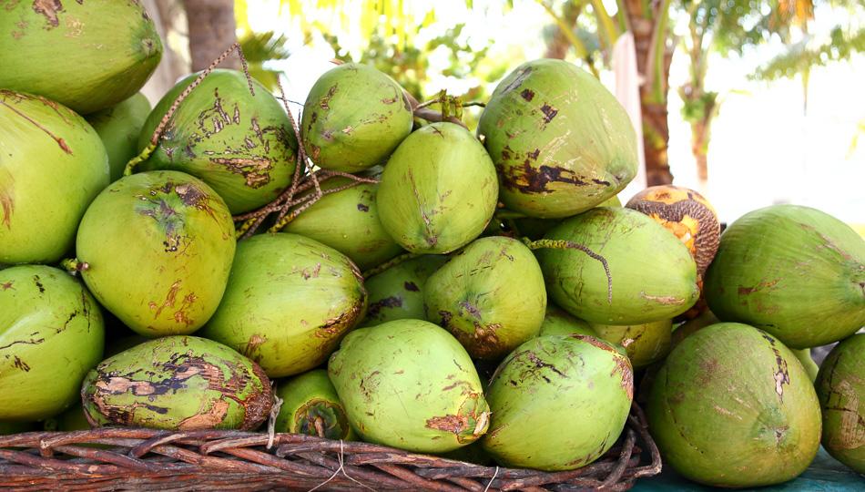 Coconuts at a Big Island Farmers Market