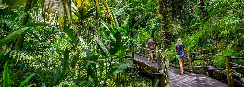 Hawaii Tropical Botanical Garden Big Island Guide