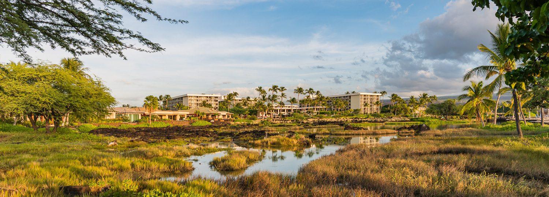 Waikoloa Beach Marriott Resort and Spa | Big Island Guide