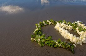 Big ISland Wedding Venues from beaches to mountains