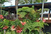 Hawaiian Oasis Bed and Breakfast Inn