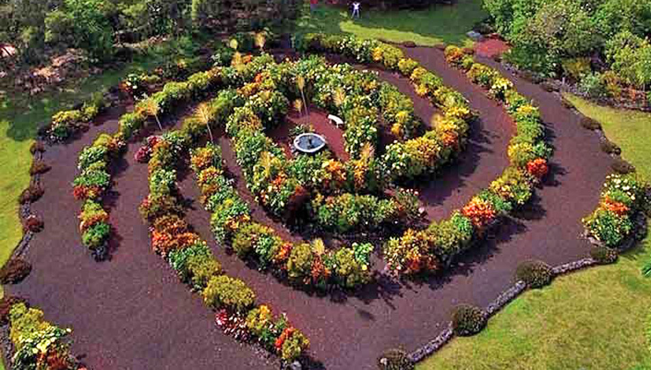 The Paleaku Big Island Botanical Gardens have beautiful flower beds like this spiral design