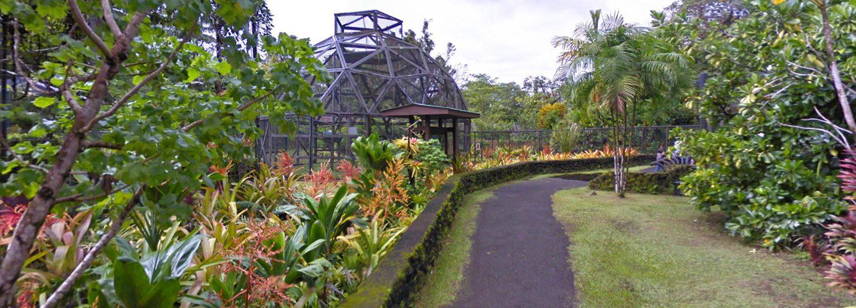 Panaewa Rainforest Zoo And Garden Big Island Guide