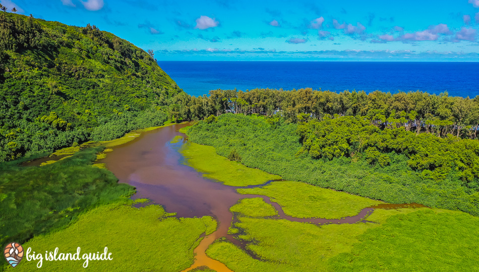Aerial View of Pololu Valley Stream and the Pacific Ocean