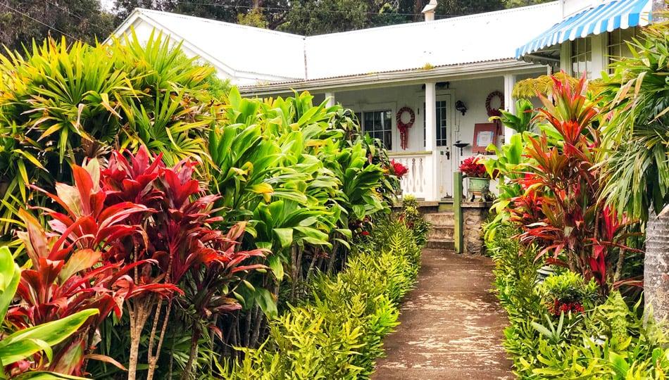 The Historic Anna Ranch in Waimea Hawaii