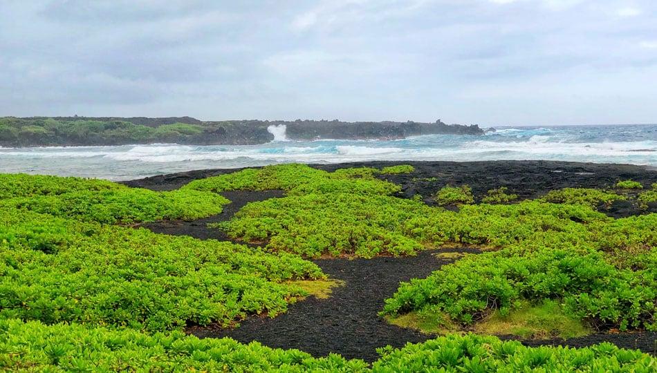 Waves in the bay near Punaluu Black Sand Beach