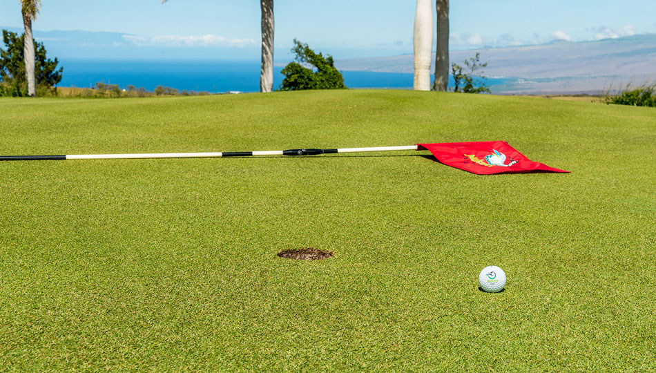 Makani Golf Club Flag & Ball