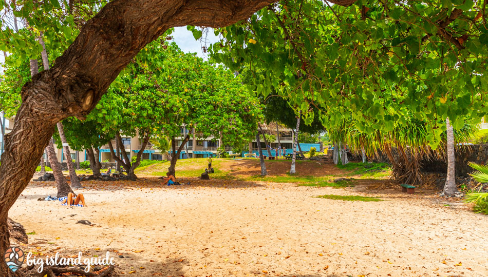 Honl's Beach Park is a great spot to picnic or relax under the trees