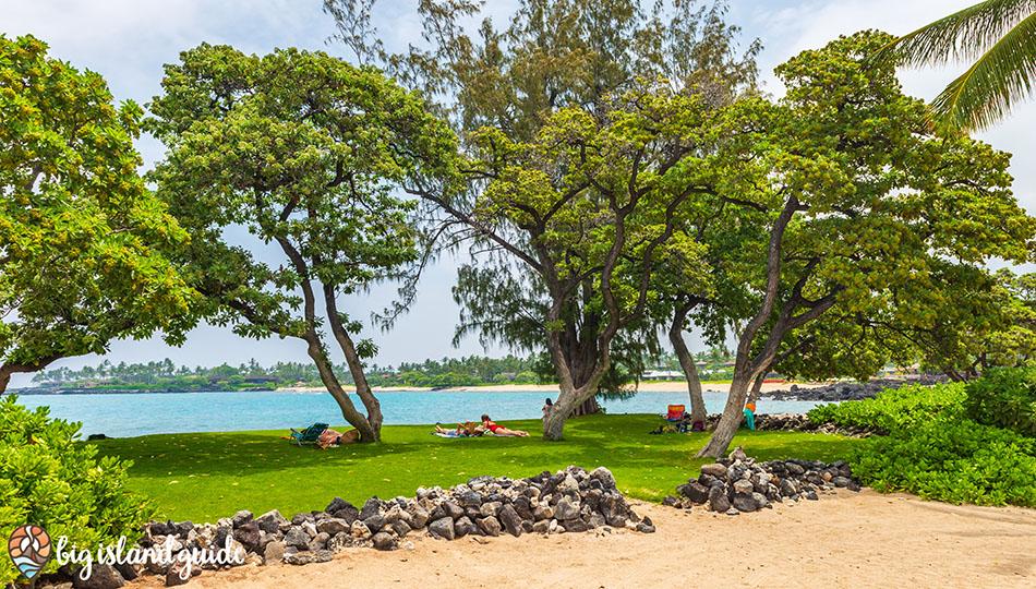 Grassy area next to Kikaua Beach