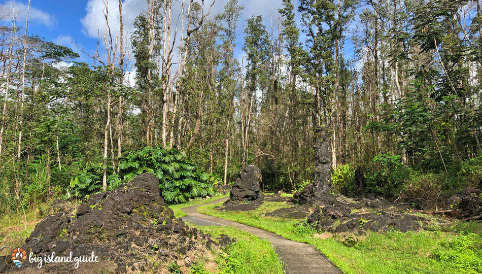 Preserved Lava Trees along the trail at Lava Tree State Park