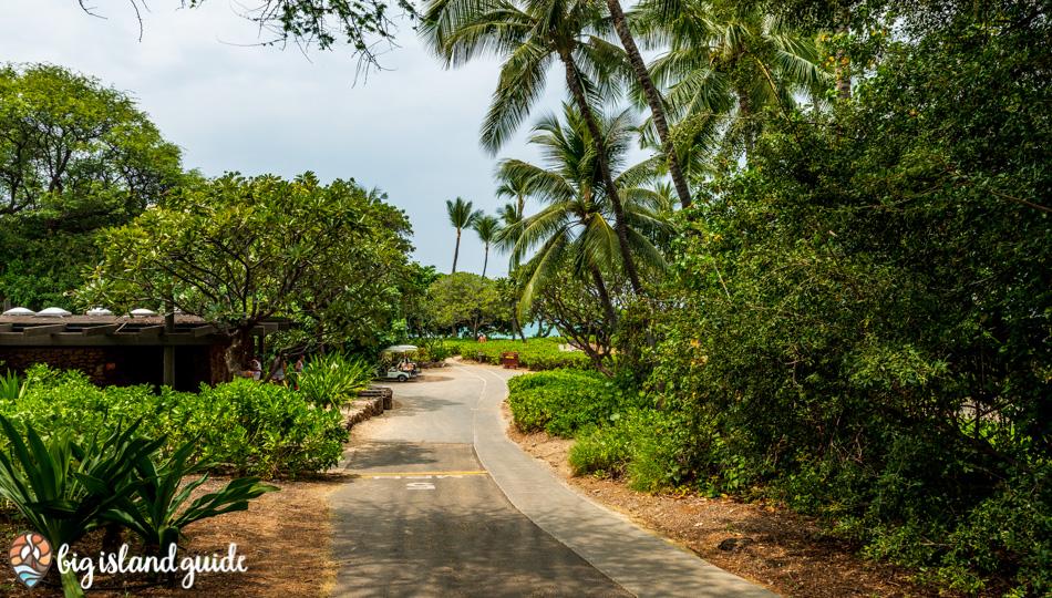 Walking trail from the Parking Lot to Kaunaoa Beach (Mauna Kea Beach)